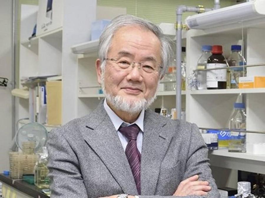 Il Nobel 2016 per la Medicina al giapponese Yoshinori Ohsumi