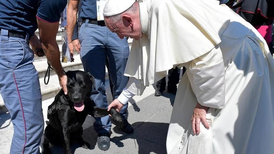 Papa saluta Leo, cane che ha salvato Giorgia